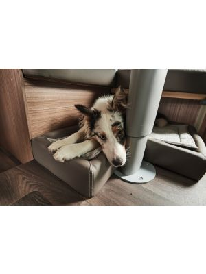 Carado Dog Bed 925x645mm